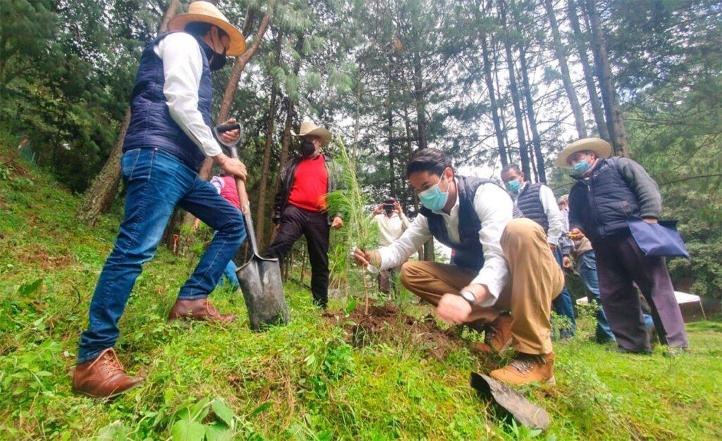 Probosque entregó apoyos forestales.